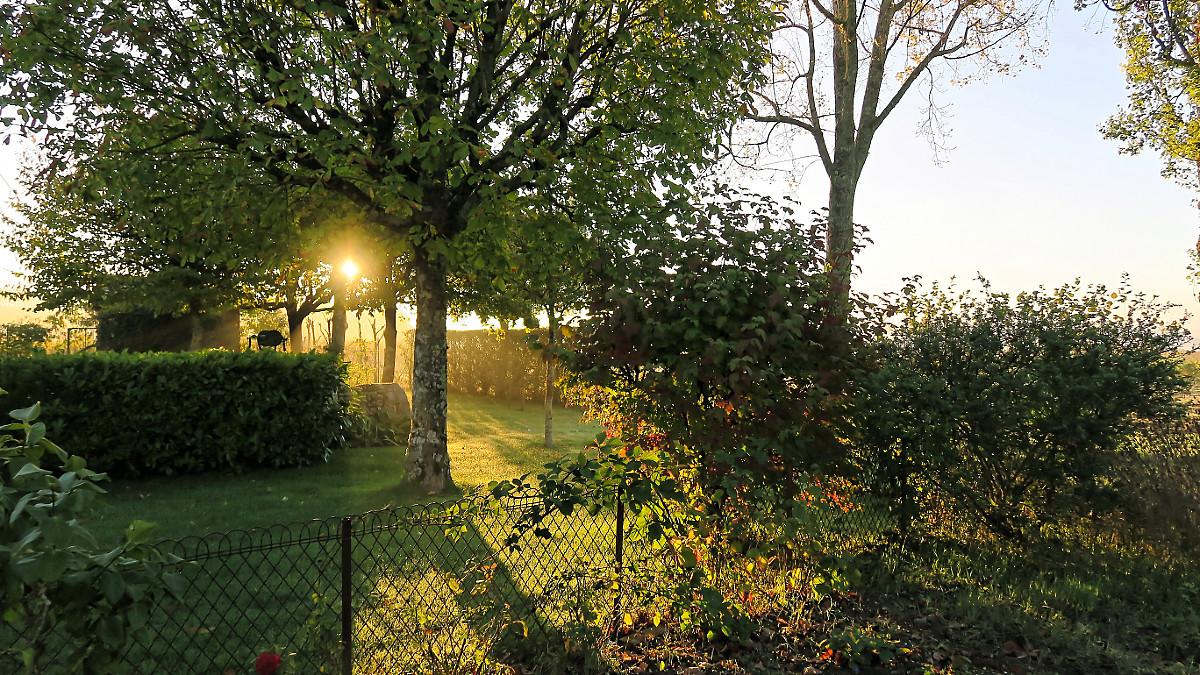 Lever de soleil sur le parc.